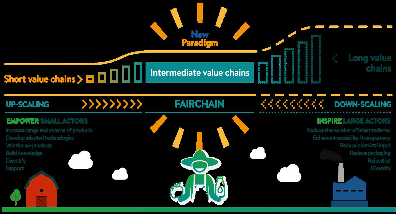 Intermediate Value Chains